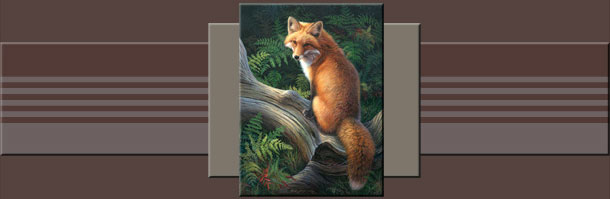 The Artist - Joni Johnson-Godsy Biography - Wildlife Artist