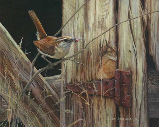 0068-humble-abode-carolina-wren-adjusted1