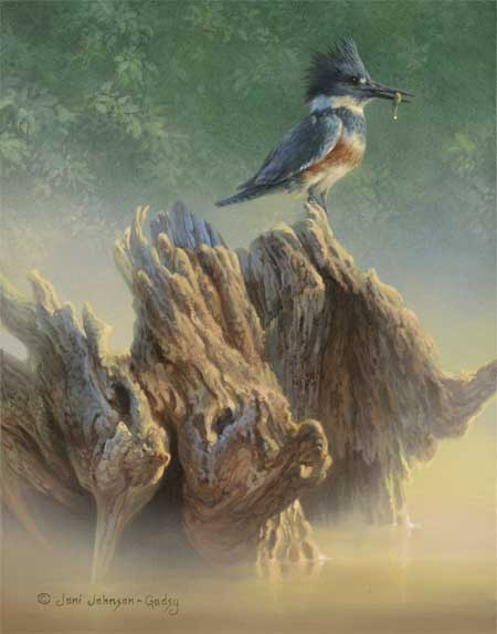 0087-maid-of-the-mist-belted-kingfisher-adjusted1