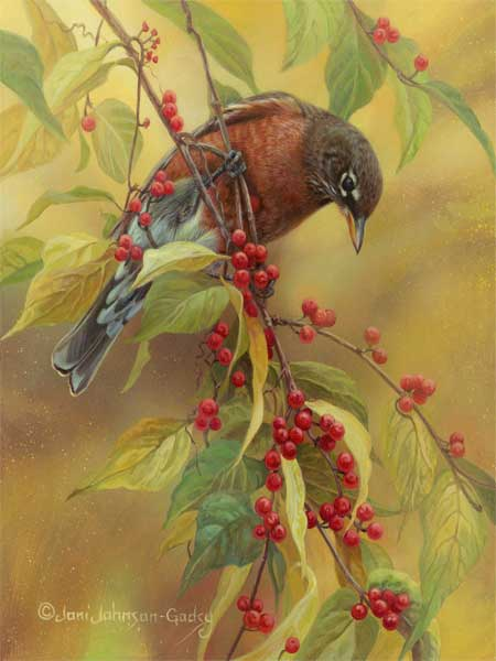 breakfast-berries-robin-adjusted